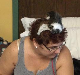 monkey on head